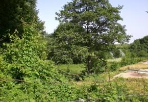 Exkluzívne stavebné pozemky v Modre - Harmónii