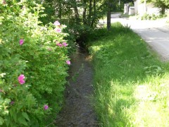 Asfaltová príjazdová komunikácia s potokom