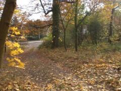 Vstup na pozemok je z asfaltovej komunikácie